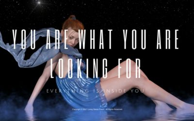 You Are What You Are Looking For