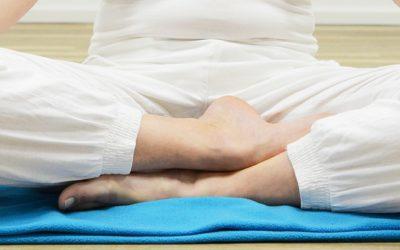 LSF Team Meditation Blog
